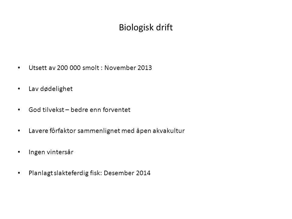 Økonomi Investering: NOK 1500 per m3 vannvolum Drift : Energikostnader/år: NOK 350 000 88 øre/kg ved 400 tonn årsproduksjon 44 øre/kg ved 800 tonn årsproduksjon