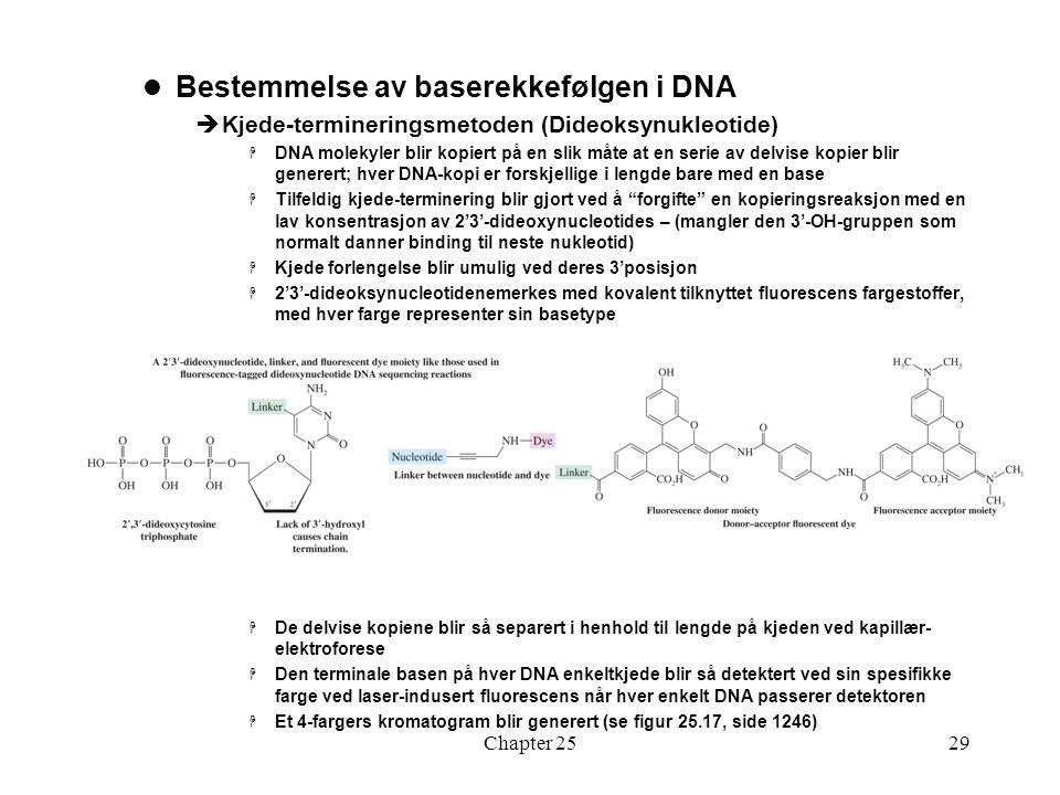 Chapter 2529 Bestemmelse av baserekkefølgen i DNA  Kjede-termineringsmetoden (Dideoksynukleotide)  DNA molekyler blir kopiert på en slik måte at en serie av delvise kopier blir generert; hver DNA-kopi er forskjellige i lengde bare med en base  Tilfeldig kjede-terminering blir gjort ved å forgifte en kopieringsreaksjon med en lav konsentrasjon av 2'3'-dideoxynucleotides – (mangler den 3'-OH-gruppen som normalt danner binding til neste nukleotid)  Kjede forlengelse blir umulig ved deres 3'posisjon  2'3'-dideoksynucleotidenemerkes med kovalent tilknyttet fluorescens fargestoffer, med hver farge representer sin basetype  De delvise kopiene blir så separert i henhold til lengde på kjeden ved kapillær- elektroforese  Den terminale basen på hver DNA enkeltkjede blir så detektert ved sin spesifikke farge ved laser-indusert fluorescens når hver enkelt DNA passerer detektoren  Et 4-fargers kromatogram blir generert (se figur 25.17, side 1246)