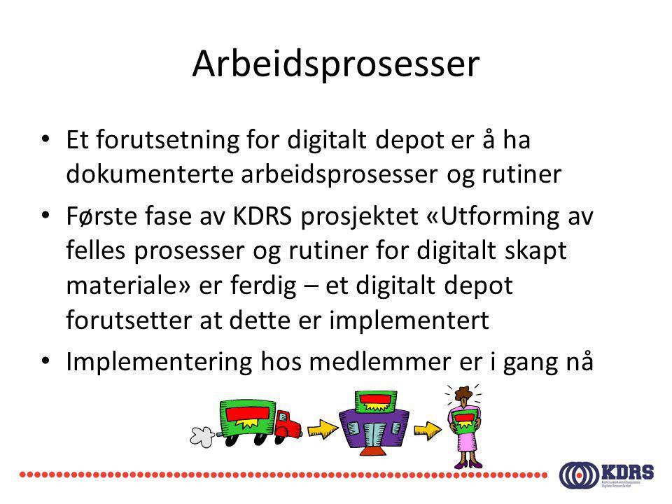 Arbeidsprosesser Et forutsetning for digitalt depot er å ha dokumenterte arbeidsprosesser og rutiner Første fase av KDRS prosjektet «Utforming av fell