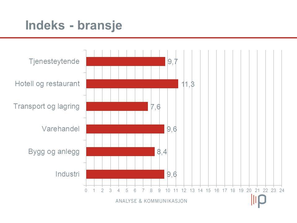 Indeks - bransje