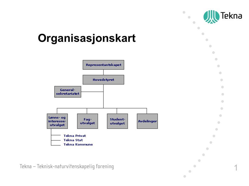 1 Organisasjonskart