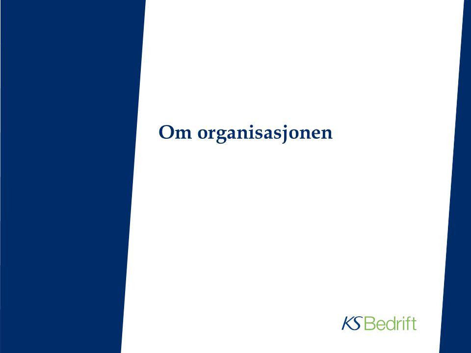 Om organisasjonen