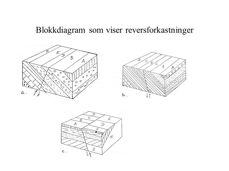 Blokkdiagram som viser reversforkastninger