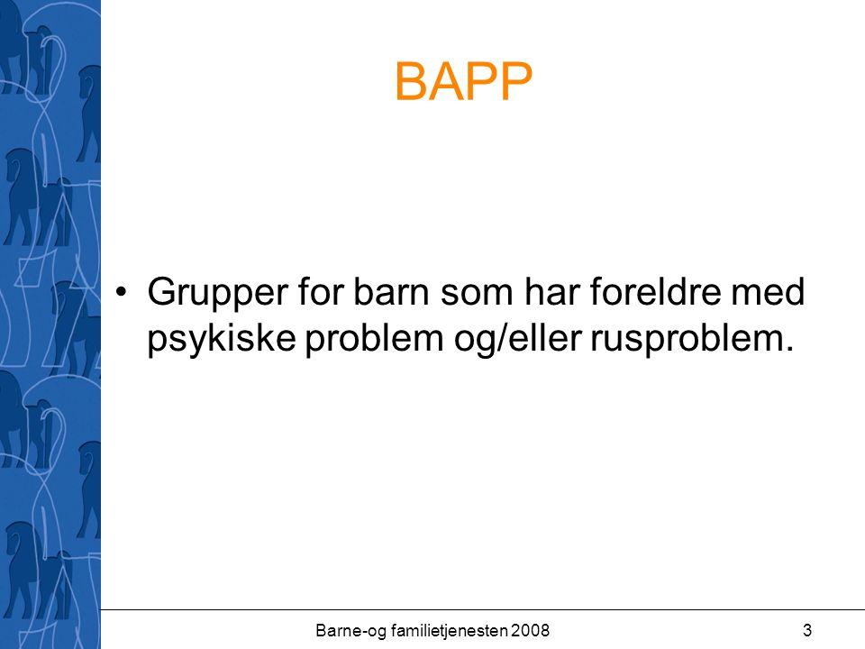 Barne-og familietjenesten 20083 BAPP Grupper for barn som har foreldre med psykiske problem og/eller rusproblem.