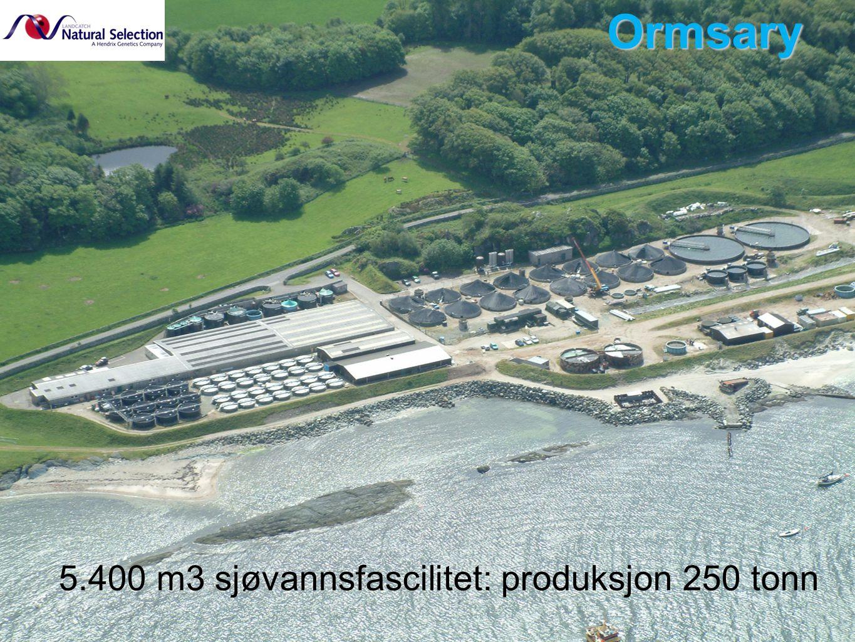 Ormsary 5.400 m3 sjøvannsfascilitet: produksjon 250 tonn