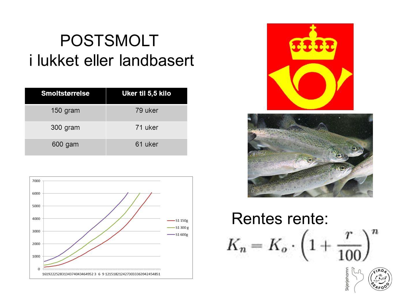 POSTSMOLT i lukket eller landbasert SmoltstørrelseUker til 5,5 kilo 150 gram79 uker 300 gram71 uker 600 gam61 uker Rentes rente: