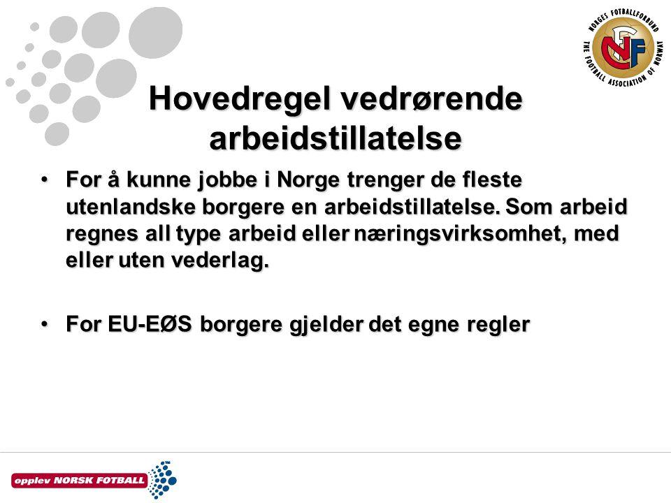 Hovedregel vedrørende arbeidstillatelse For å kunne jobbe i Norge trenger de fleste utenlandske borgere en arbeidstillatelse. Som arbeid regnes all ty