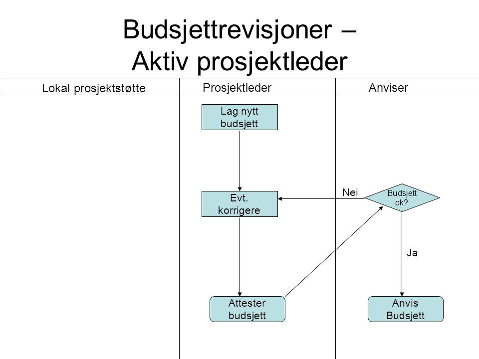 Budsjettrevisjoner – Delegerende prosjektleder Budsjett ok.