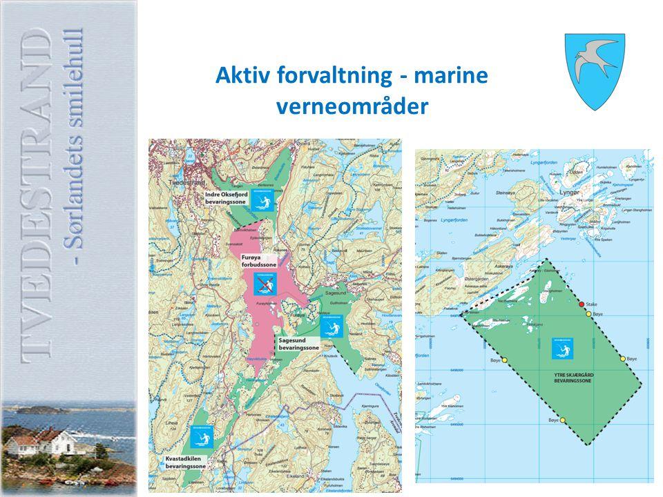 Aktiv forvaltning - marine verneområder