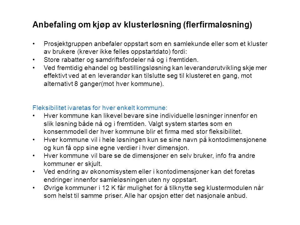 Anbefaling om kjøp av klusterløsning (flerfirmaløsning) Prosjektgruppen anbefaler oppstart som en samlekunde eller som et kluster av brukere (krever i