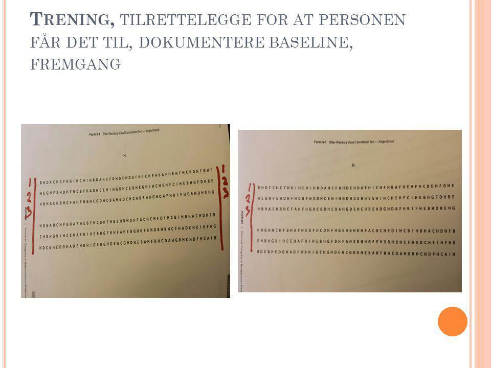 T RENING, TILRETTELEGGE FOR AT PERSONEN FÅR DET TIL, DOKUMENTERE BASELINE, FREMGANG