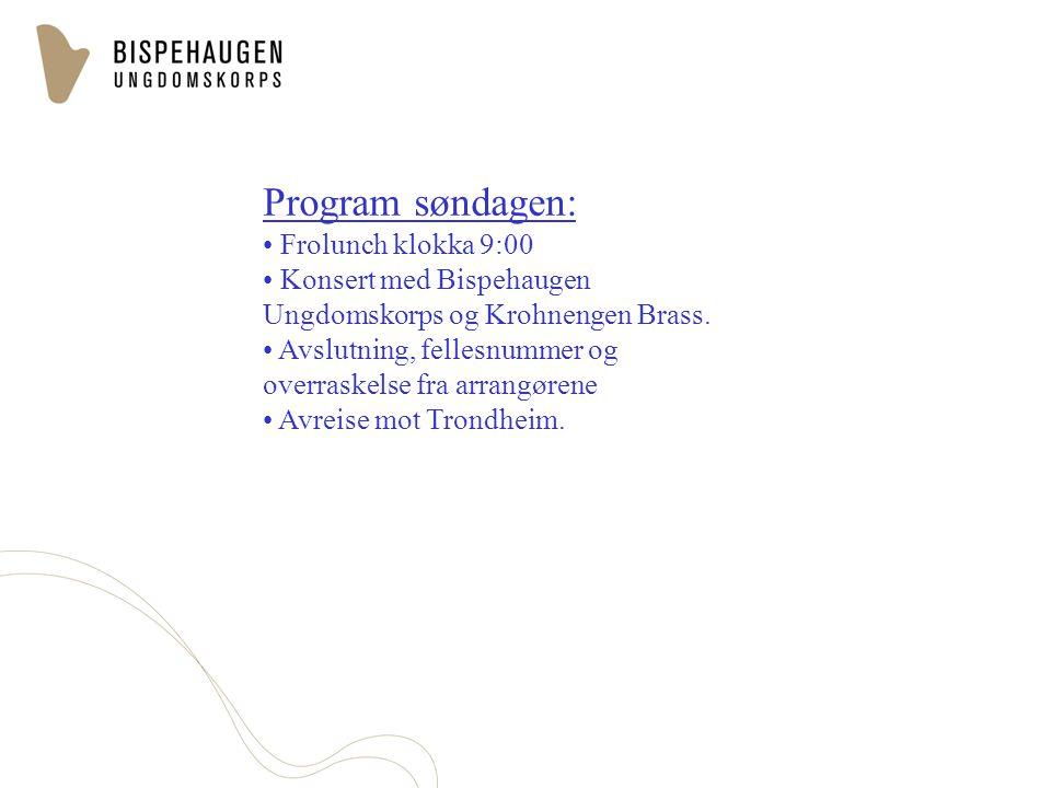 Program søndagen: Frolunch klokka 9:00 Konsert med Bispehaugen Ungdomskorps og Krohnengen Brass. Avslutning, fellesnummer og overraskelse fra arrangør