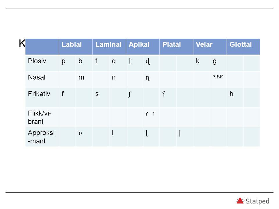 Konsonanter i østnorsk LabialLaminalApikalPlatalVelarGlottal Plosivpbtd ʈ ɖ kg Nasalmn ɳ Frikativfs ʃʕ h Flikk/vi- brant ɾ r Approksi -mant ʋ l ɭ j