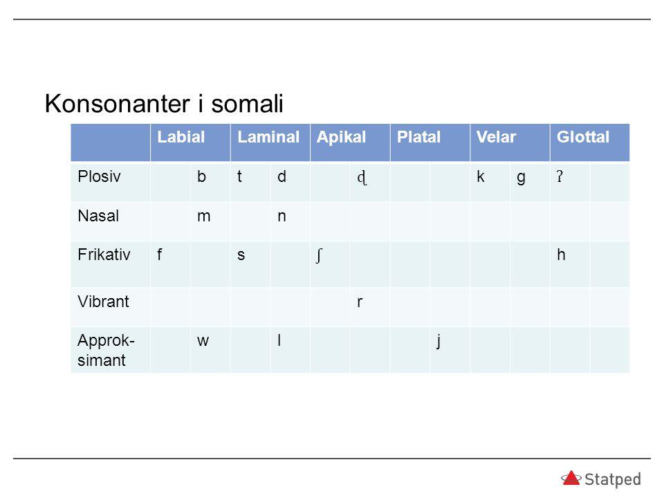 Konsonanter i somali LabialLaminalApikalPlatalVelarGlottal Plosivbtd ɖ kg ʔ Nasalmn Frikativfs ʃ h Vibrantr Approk- simant wlj