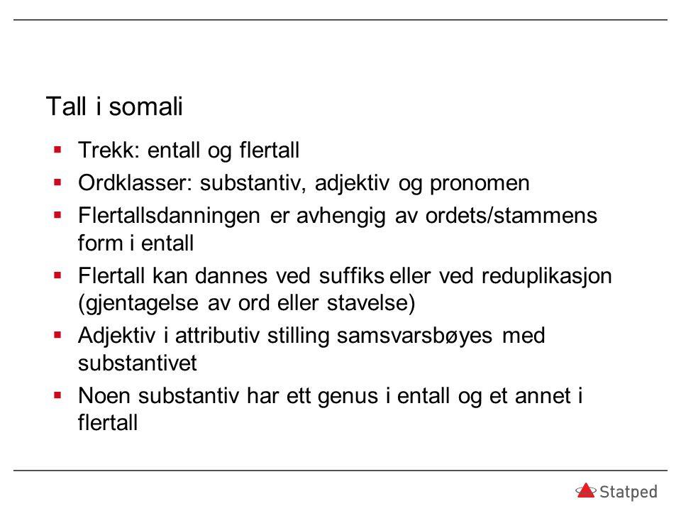 Tall i somali  Trekk: entall og flertall  Ordklasser: substantiv, adjektiv og pronomen  Flertallsdanningen er avhengig av ordets/stammens form i en
