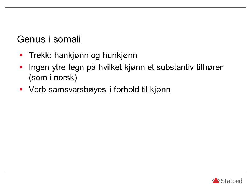 Genus i somali  Trekk: hankjønn og hunkjønn  Ingen ytre tegn på hvilket kjønn et substantiv tilhører (som i norsk)  Verb samsvarsbøyes i forhold ti
