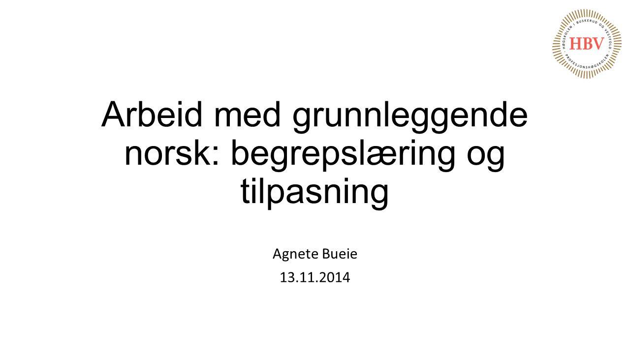 Arbeid med grunnleggende norsk: begrepslæring og tilpasning Agnete Bueie 13.11.2014