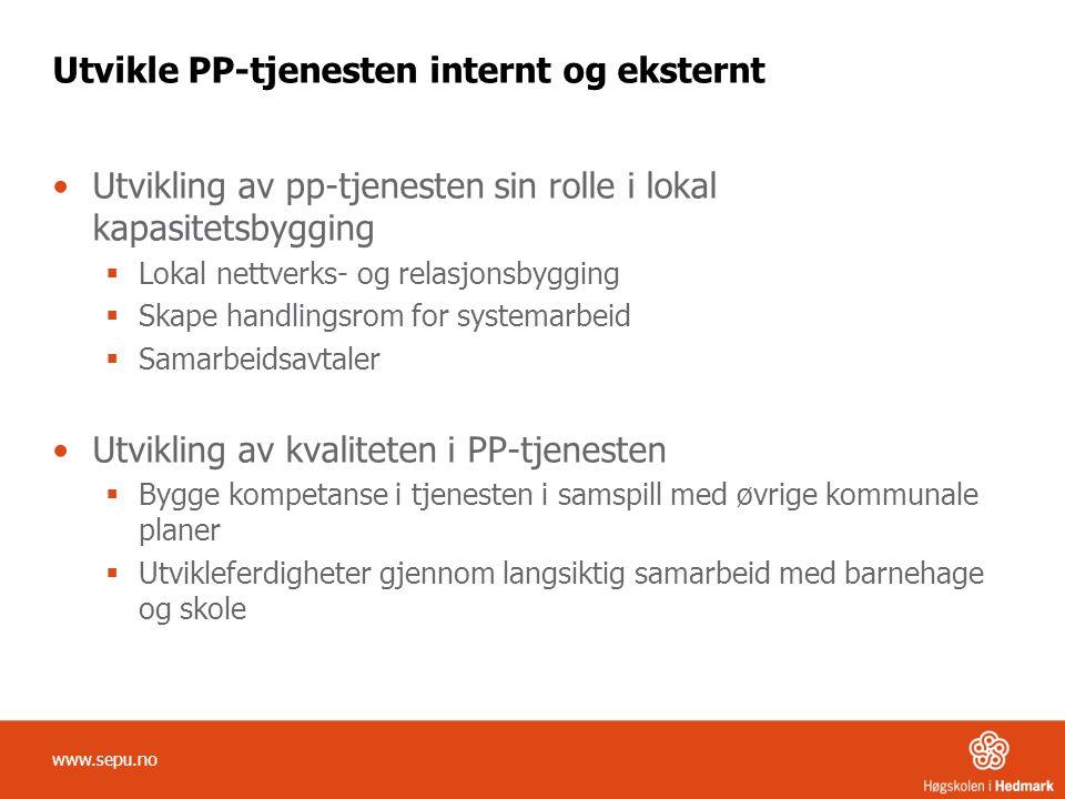 Utvikle PP-tjenesten internt og eksternt Utvikling av pp-tjenesten sin rolle i lokal kapasitetsbygging  Lokal nettverks- og relasjonsbygging  Skape