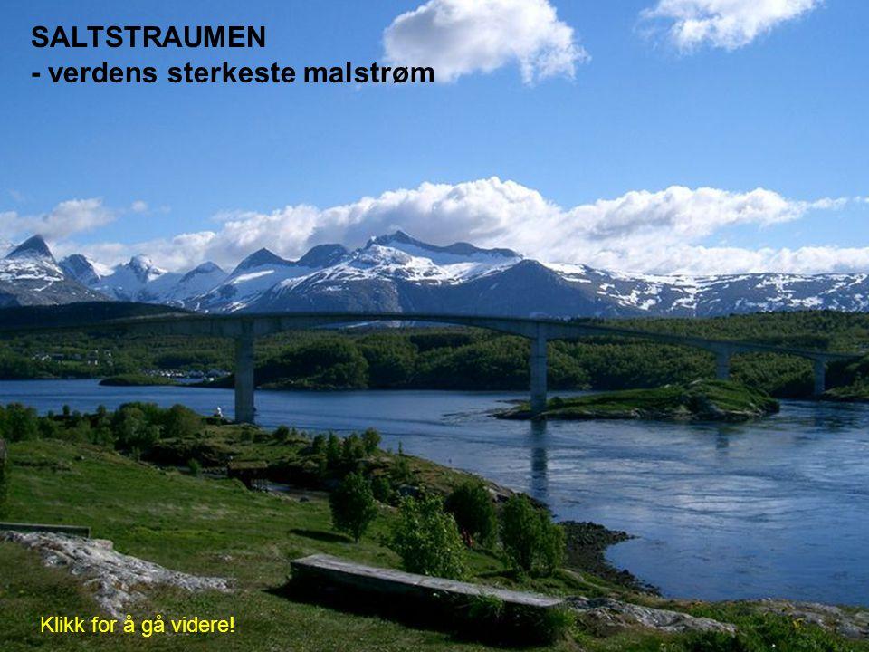 SALTSTRAUMEN - verdens sterkeste malstrøm Klikk for å gå videre!