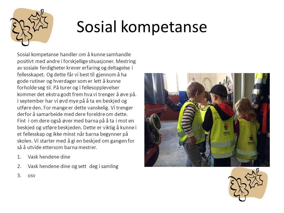 Sosial kompetanse Sosial kompetanse handler om å kunne samhandle positivt med andre i forskjellige situasjoner. Mestring av sosiale ferdigheter krever