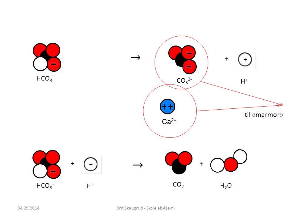 04.09.2014Brit Skaugrud - Skolelab-kjemi + + + HCO 3 − H+H+ CO 2 H2OH2O HCO 3 − + + H+H+ CO 3 2- til «marmor» Ca 2+