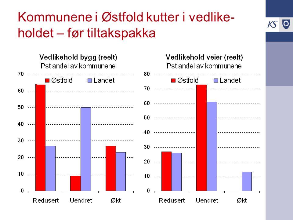 Kommunene i Østfold kutter i vedlike- holdet – før tiltakspakka