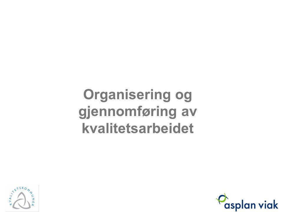 Organisering og gjennomføring av kvalitetsarbeidet Asplan Viak