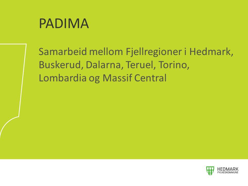 Samarbeid mellom Fjellregioner i Hedmark, Buskerud, Dalarna, Teruel, Torino, Lombardia og Massif Central PADIMA
