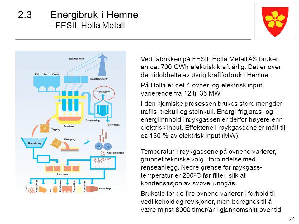 24 Ved fabrikken på FESIL Holla Metall AS bruker en ca. 700 GWh elektrisk kraft årlig. Det er over det tidobbelte av øvrig kraftforbruk i Hemne. På Ho