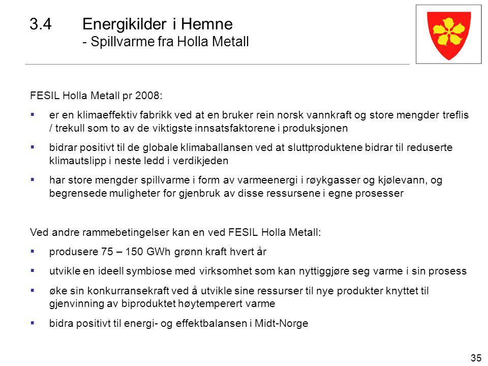 35 FESIL Holla Metall pr 2008:  er en klimaeffektiv fabrikk ved at en bruker rein norsk vannkraft og store mengder treflis / trekull som to av de vik