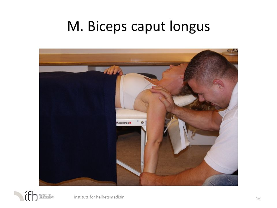 M. Biceps caput longus 16 Institutt for helhetsmedisin
