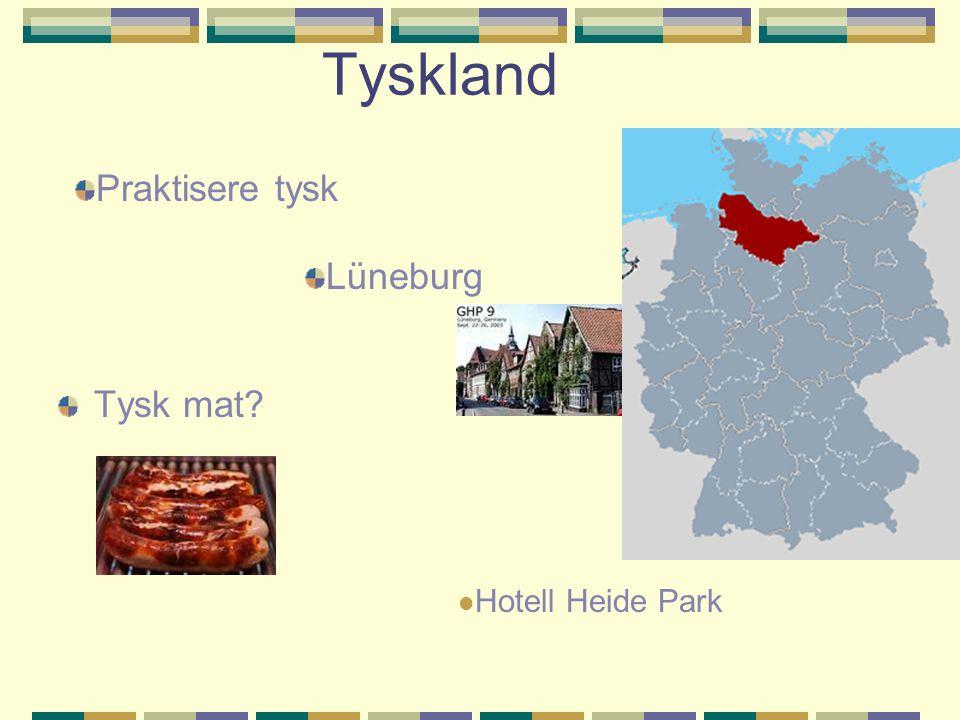 Tyskland Tysk mat Praktisere tysk Lüneburg Hotell Heide Park