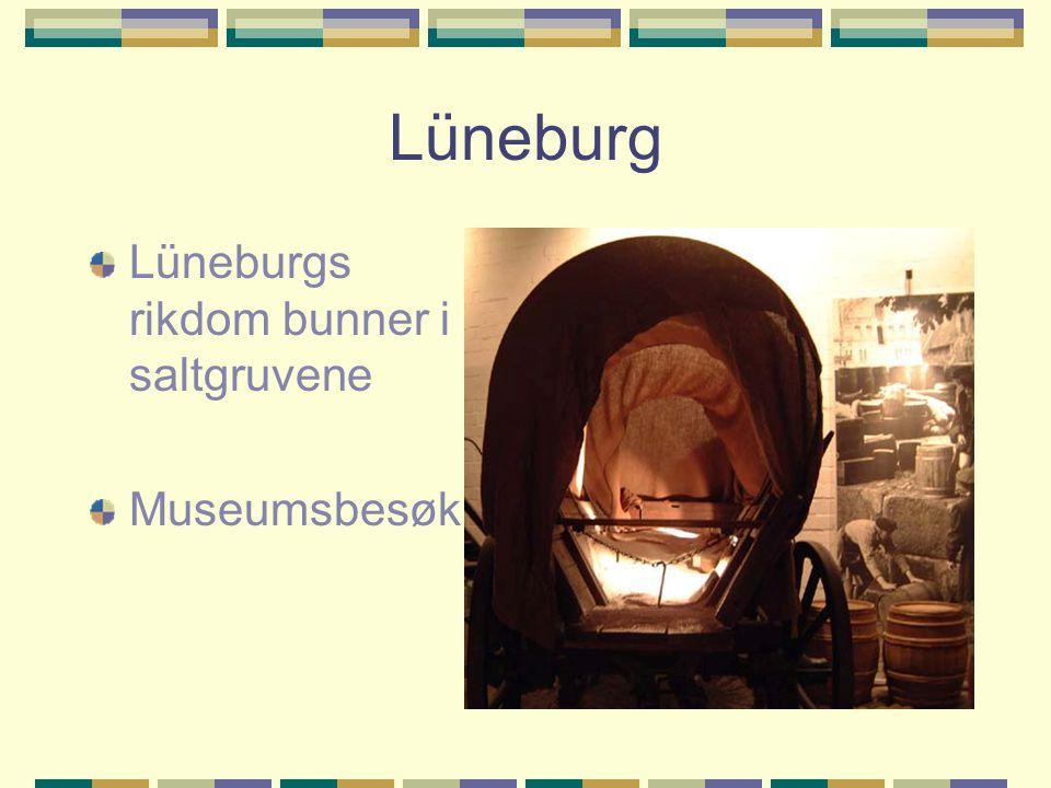 Lüneburg Lüneburgs rikdom bunner i saltgruvene Museumsbesøk