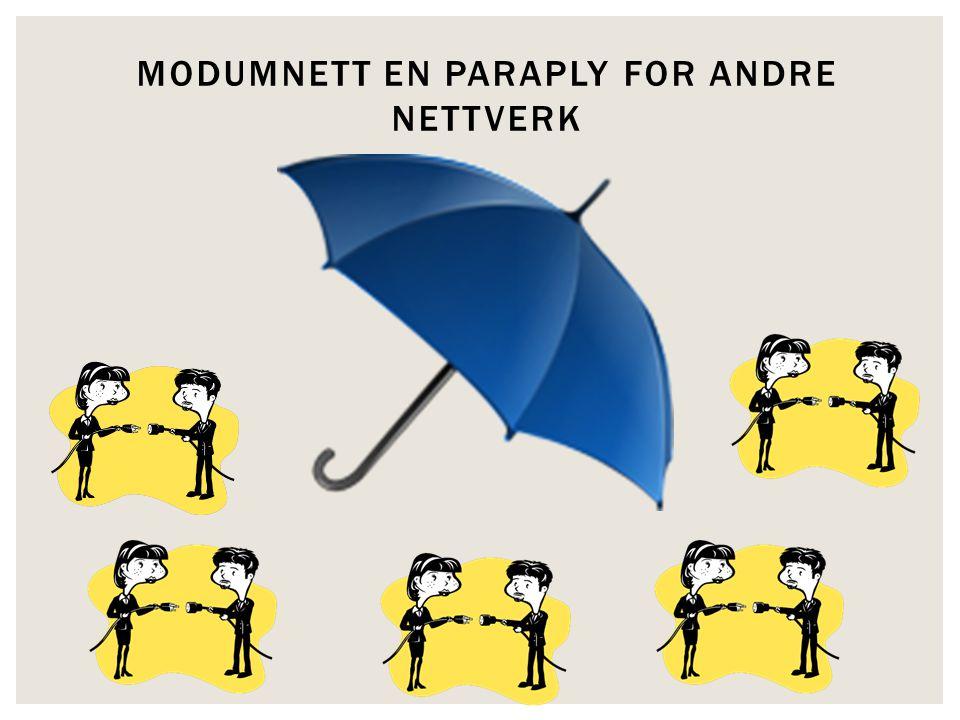 MODUMNETT EN PARAPLY FOR ANDRE NETTVERK
