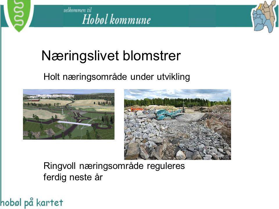 Næringslivet blomstrer Holt næringsområde under utvikling Ringvoll næringsområde reguleres ferdig neste år