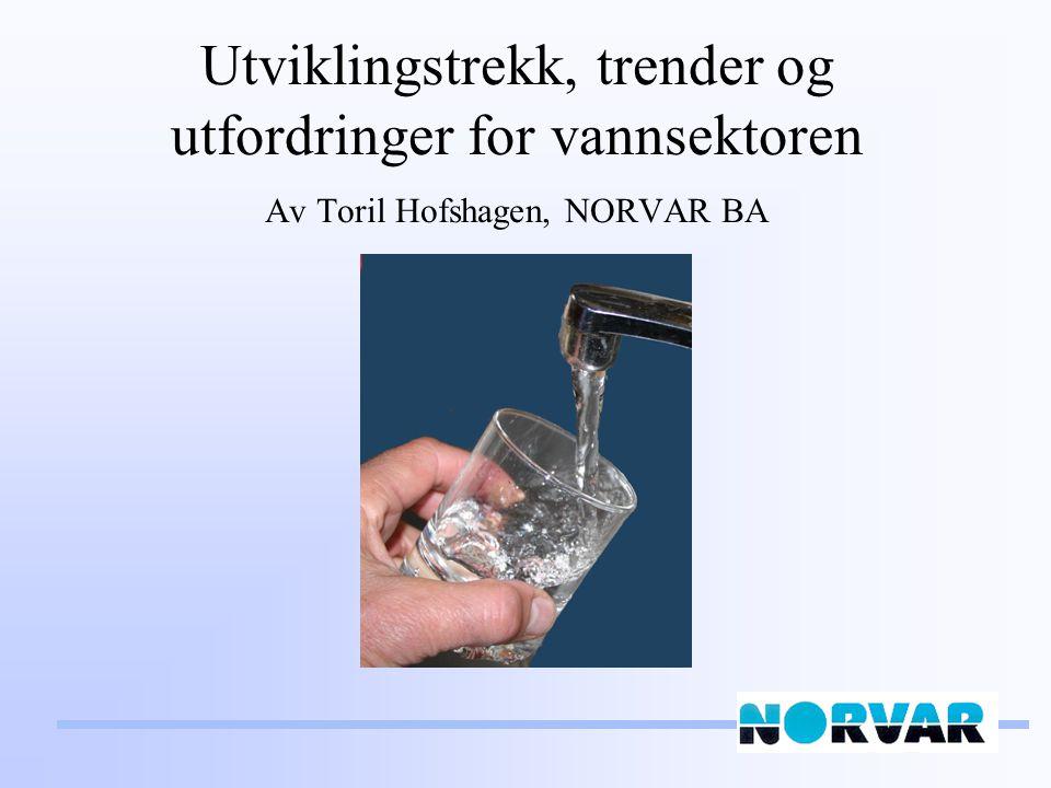Litt vann-statistikk (Kilder: Folkehelseinstituttet, SSB) Norsk vannrikdom: 175 l/p*d (hele verdens befolkning) 1640 vannverk > 50 personer Vannverk med dobbelt behandlingsbarriere –2000: 148 (1,1 mill.