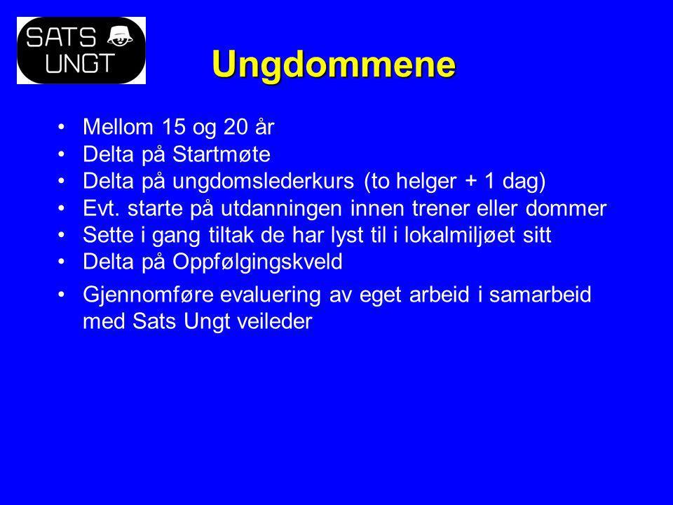 Ungdommene Mellom 15 og 20 år Delta på Startmøte Delta på ungdomslederkurs (to helger + 1 dag) Evt.