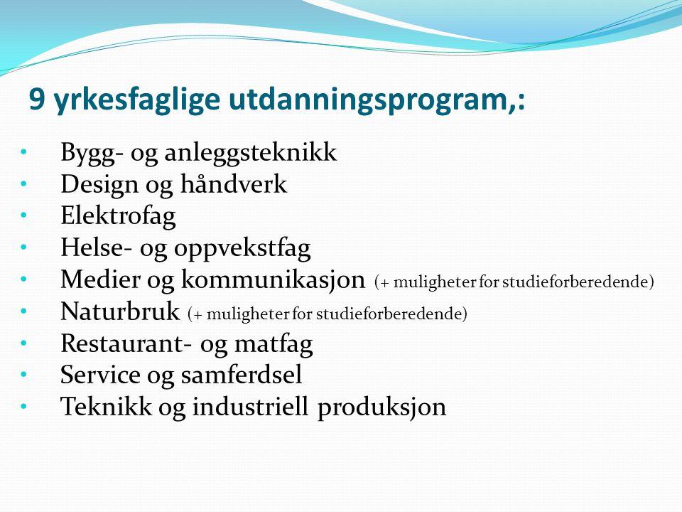 9 yrkesfaglige utdanningsprogram,: Bygg- og anleggsteknikk Design og håndverk Elektrofag Helse- og oppvekstfag Medier og kommunikasjon (+ muligheter f