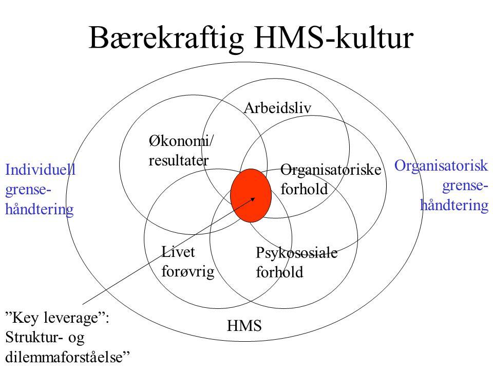 Bærekraftig HMS-kultur Økonomi/ resultater HMS Livet forøvrig Arbeidsliv Organisatoriske forhold Psykososiale forhold Individuell grense- håndtering Organisatorisk grense- håndtering Key leverage : Struktur- og dilemmaforståelse