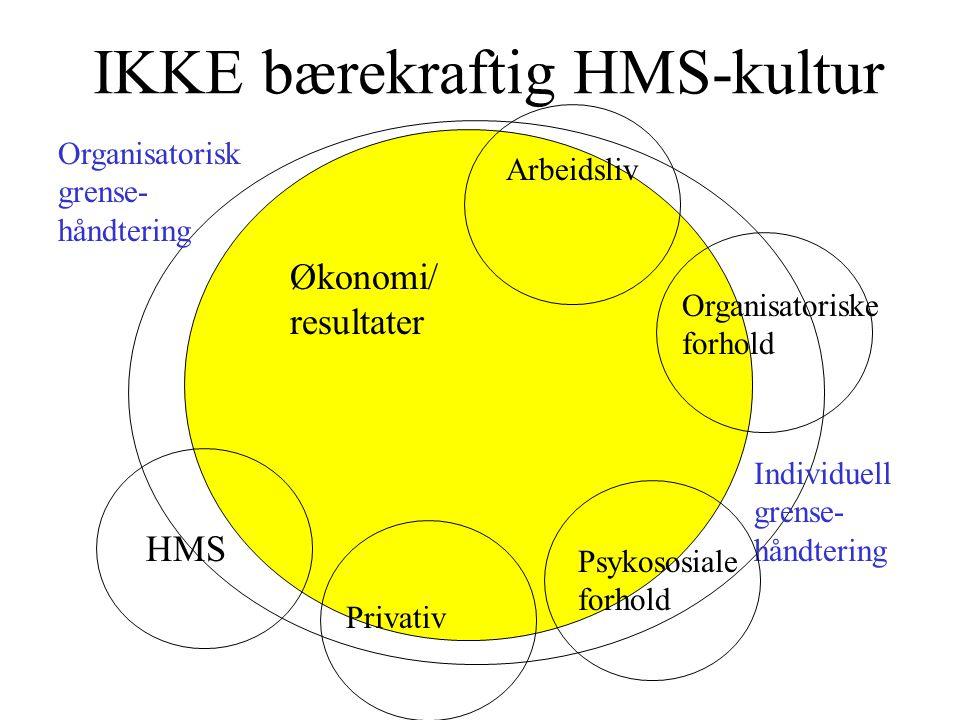 IKKE bærekraftig HMS-kultur Økonomi/ resultater HMS Privativ Arbeidsliv Organisatoriske forhold Psykososiale forhold Individuell grense- håndtering Organisatorisk grense- håndtering