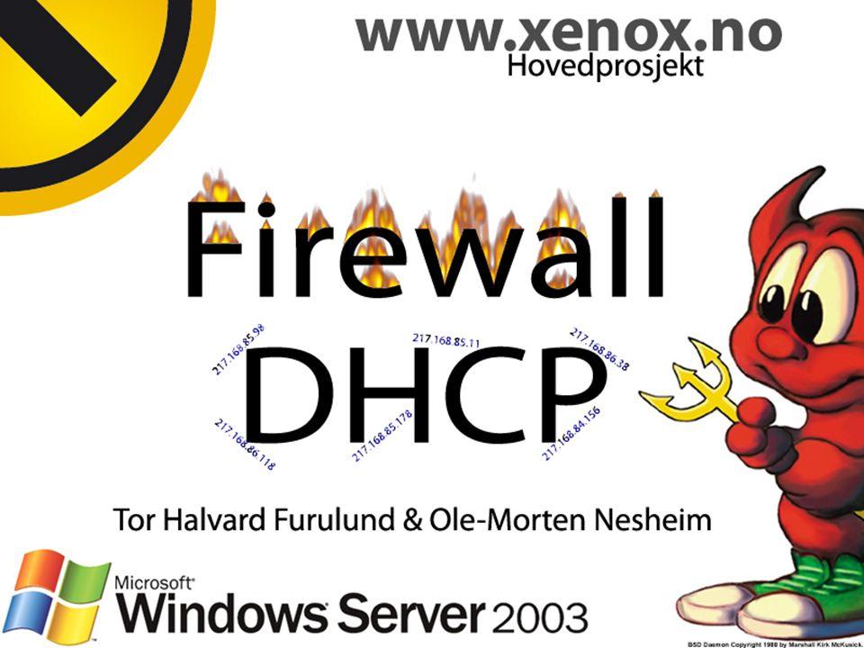 Xenox er et dataparty som arrangeres i Steinkjer Xenox er et rusfritt arrangement for og av ungdom i Midt-Norge.