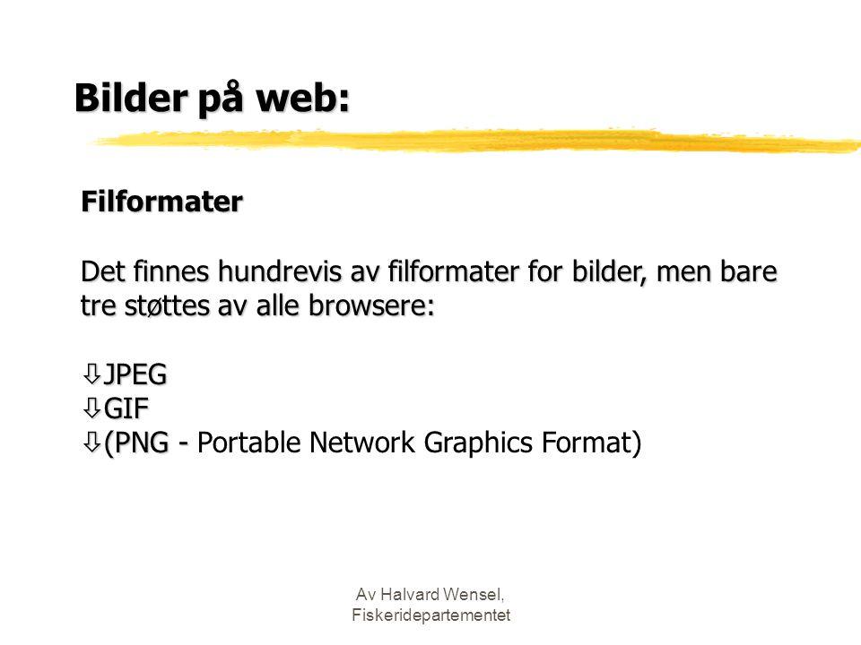Av Halvard Wensel, Fiskeridepartementet Bilder på web: Filformater Det finnes hundrevis av filformater for bilder, men bare tre støttes av alle browsere: ò JPEG ò GIF  (PNG -  (PNG - Portable Network Graphics Format)