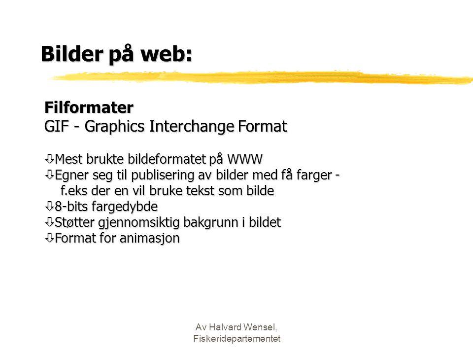 Av Halvard Wensel, Fiskeridepartementet Bilder på web: Filformater GIF - Graphics Interchange Format ò Mest brukte bildeformatet på WWW ò Egner seg ti