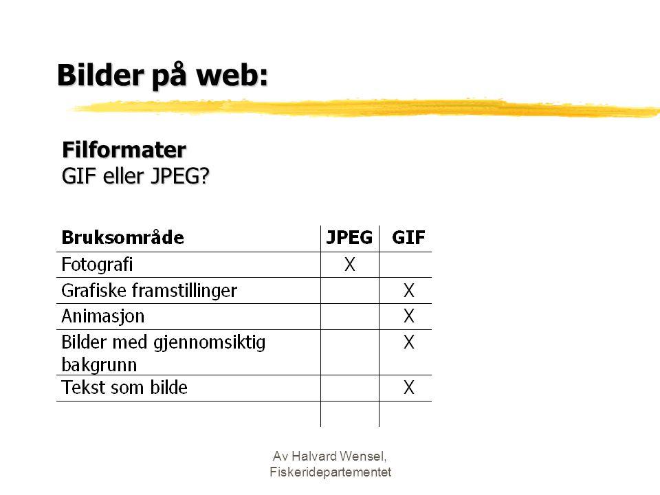 Av Halvard Wensel, Fiskeridepartementet Bilder på web: Filformater GIF eller JPEG?