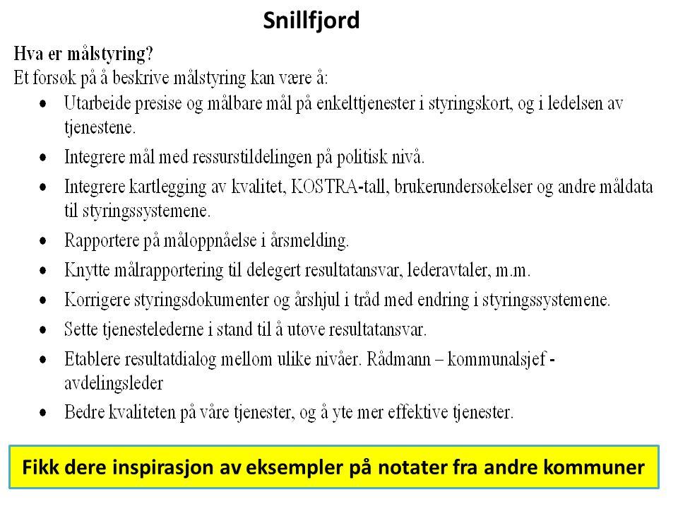 Snillfjord Fikk dere inspirasjon av eksempler på notater fra andre kommuner