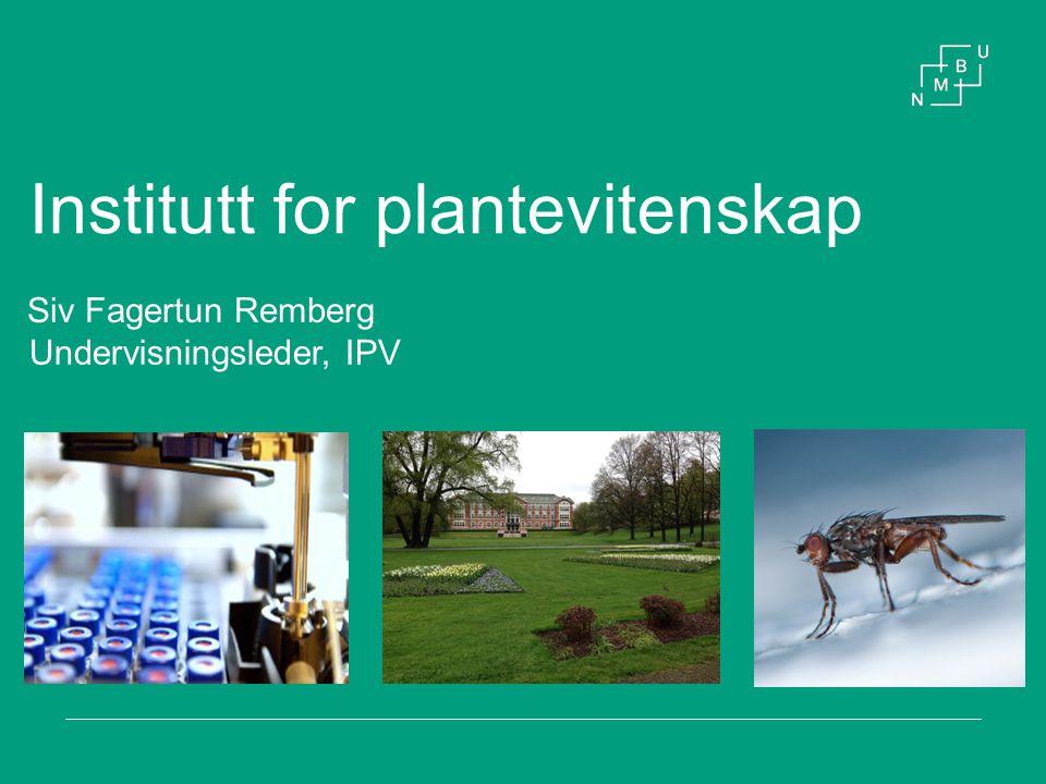 Institutt for plantevitenskap Siv Fagertun Remberg Undervisningsleder, IPV