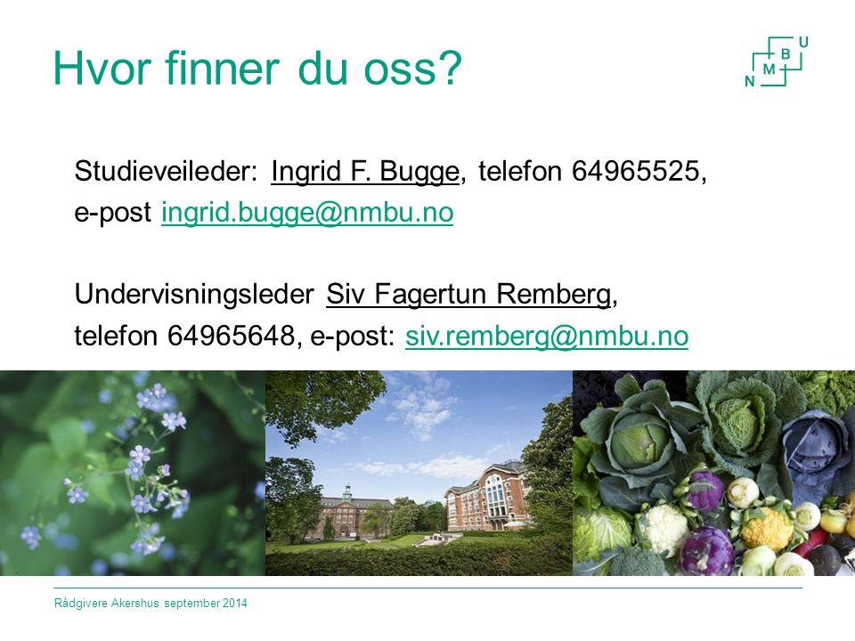 Hvor finner du oss? Studieveileder: Ingrid F. Bugge, telefon 64965525, e-post ingrid.bugge@nmbu.noingrid.bugge@nmbu.no Undervisningsleder Siv Fagertun