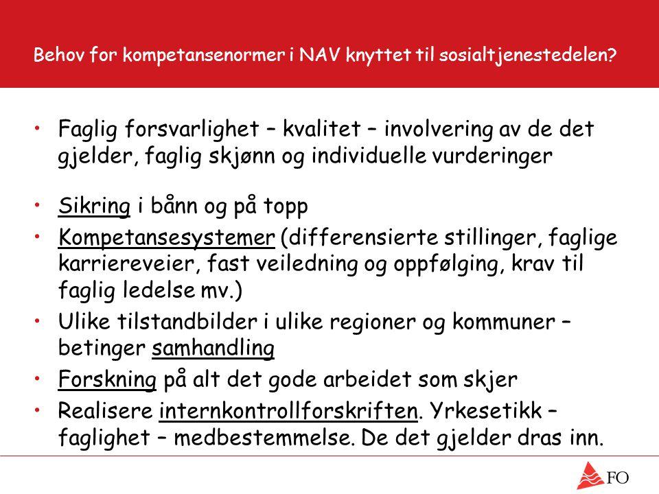Behov for kompetansenormer i NAV knyttet til sosialtjenestedelen.