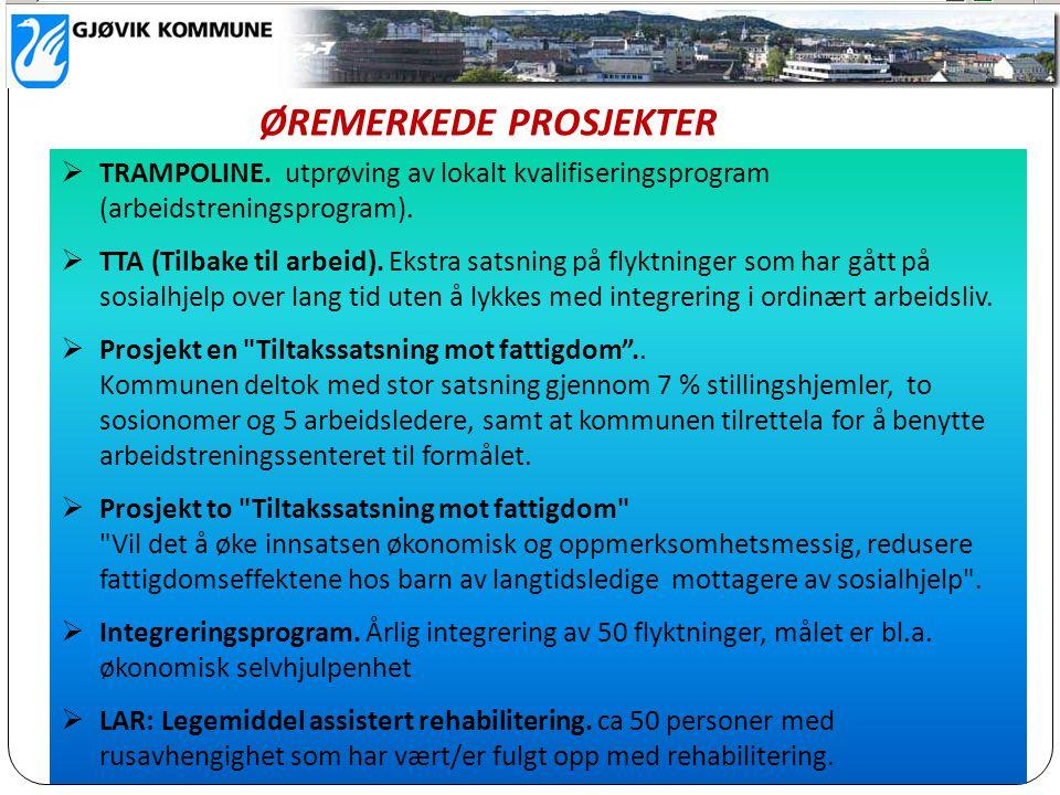  TRAMPOLINE. utprøving av lokalt kvalifiseringsprogram (arbeidstreningsprogram).  TTA (Tilbake til arbeid). Ekstra satsning på flyktninger som har g