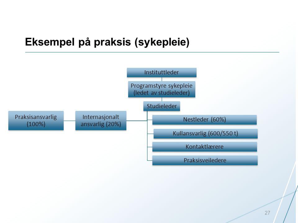 Eksempel på praksis (sykepleie) 27 Instituttleder Programstyre sykepleie (ledet av studieleder) Studieleder Nestleder (60%) Kullansvarlig (600/550 t)